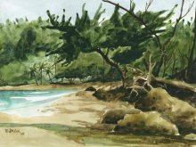 Kauai watercolor artwork by Hawaii Artist Emily Miller - Plein Air at Moloaa Beach