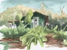 Kauai watercolor artwork by Hawaii Artist Emily Miller - Plein Air, Kokee CCC Cabin