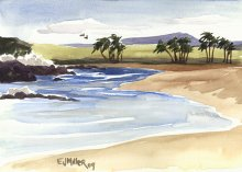Kauai watercolor artwork by Hawaii Artist Emily Miller - South Baby Beach, Salt Pond