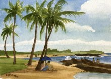 Kauai watercolor artwork by Hawaii Artist Emily Miller - North Baby Beach, Salt Pond