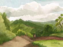 Kauai watercolor artwork by Hawaii Artist Emily Miller - Pihea trail, Kokee mountains