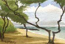 Kauai watercolor artwork by Hawaii Artist Emily Miller - Ironwoods at Bullshed beach