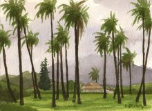 Kauai watercolor artwork by Hawaii Artist Emily Miller - Plein air, Through the coconut palms