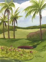 Kauai watercolor artwork by Hawaii Artist Emily Miller - Lotus Pond, Poipu