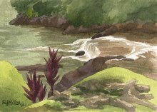 Kauai watercolor artwork by Hawaii Artist Emily Miller - Stream at Kilauea Stone Dam