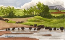 Kauai Artwork by Hawaii Artist Emily Miller - Salt Pond afternoon