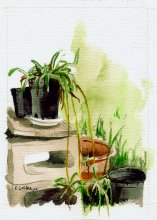 Kauai watercolor artwork by Hawaii Artist Emily Miller - Backyard - Pochade Challenge