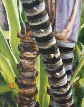 Kauai Artwork by Hawaii Artist Emily Miller - Sugarcane