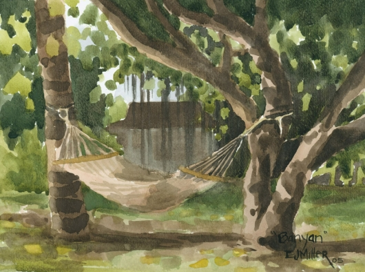 Hammock at Waimea Plantation Cottages Kauai watercolor painting - Artist Emily Miller's Hawaii artwork of banyan, tree, hammock, waimea plantation cottages, waimea art