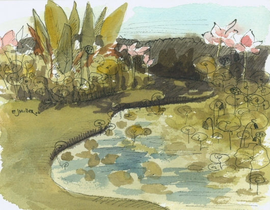 Plein Air, National Tropical Botanical Gardens Kauai watercolor painting - Artist Emily Miller's Hawaii artwork of flowers, pond, lotus, NTBG art