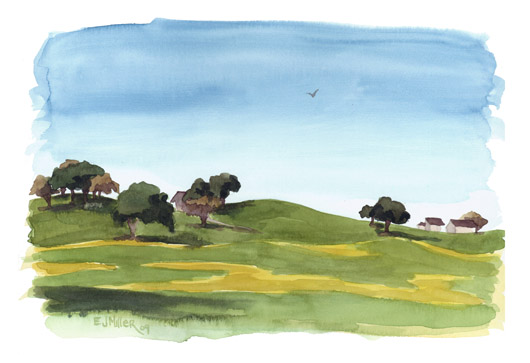 Plein Air, Mustard Fields in Sebastopol, California, California -  artwork by Emily Miller