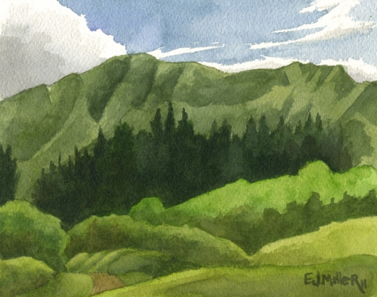 Cook Island Pines, Kahili Mountain Park Kauai watercolor painting - Artist Emily Miller's Hawaii artwork of green, mountains art
