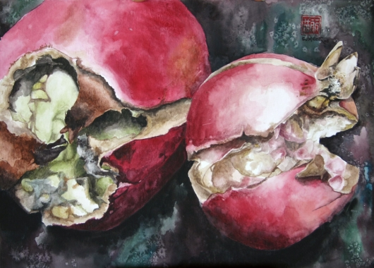 Gorgeous and Rotten - Pomegranates Kauai watercolor painting - Artist Emily Miller's Hawaii artwork of fruit, pink, red, pomegranate art