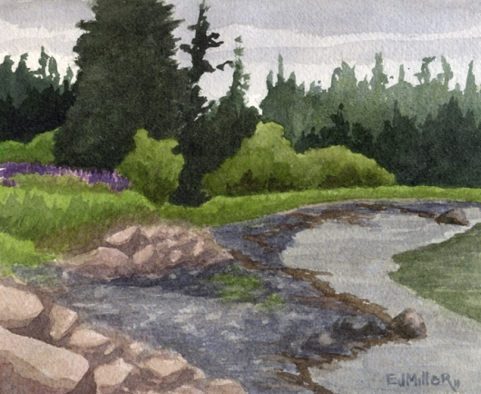 Low Tide and Lupines, Deer Isle, 2011