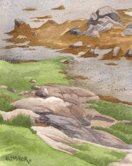 Low Tide, Deer Isle, Down East Maine -  artwork by Emily Miller