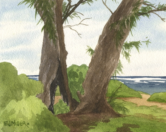 Kapaa Shoreline, Ironwoods Kauai watercolor painting - Artist Emily Miller's Hawaii artwork of tree, beach, ocean, kapaa art