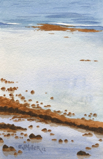 Kapaa Reef, 2012 •