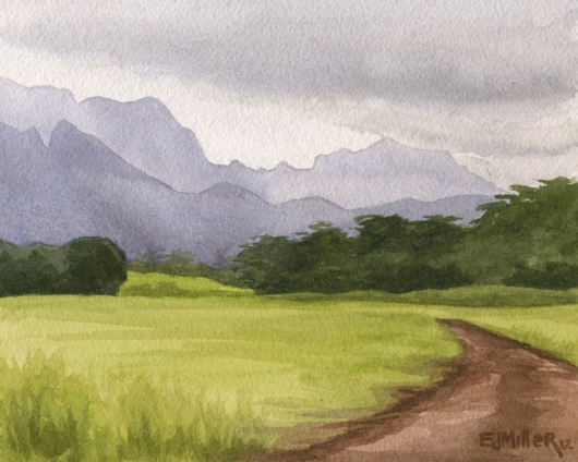 Afternoon mountains, Lihue Kauai watercolor painting - Artist Emily Miller's Hawaii artwork of mountains, pasture, lihue art