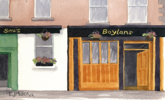 Boylan's pub, Carrickmacross, Ireland, 2012