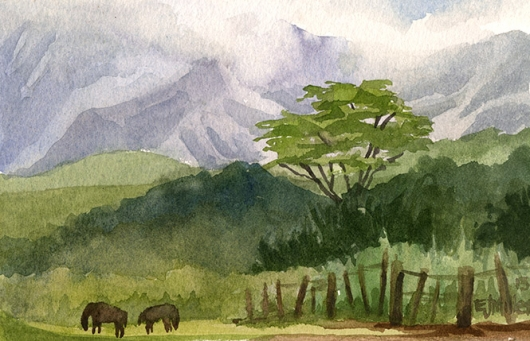 Horses Grazing at Three Corner Ranch Kauai watercolor painting - Artist Emily Miller's Hawaii artwork of lihue, mountains, pasture, horses art