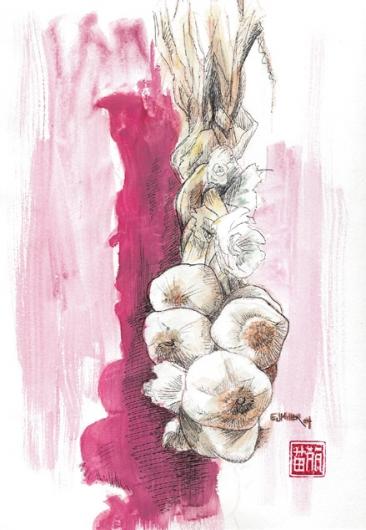 Still Life, Hanging Garlic, 2004 •