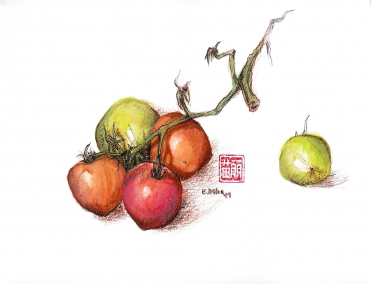Still Life, Tomatoes, 2004 •