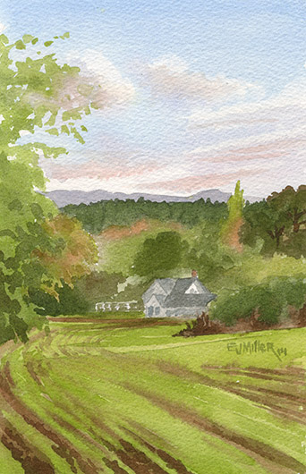 Thatcher Park Sunset, Countryside -  artwork by Emily Miller