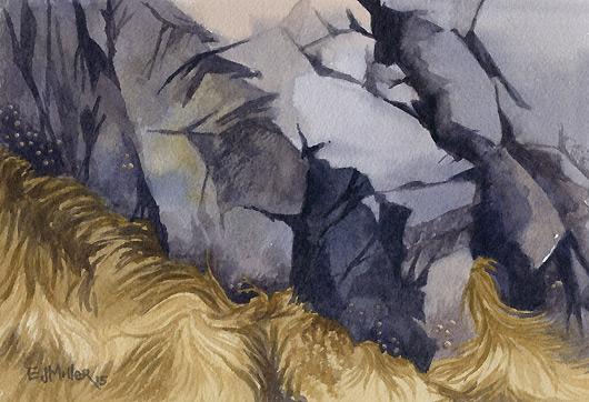 Rocks and Seaweed, Deer Isle