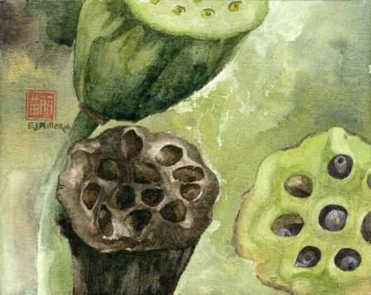 Lotus (Pod), 2006