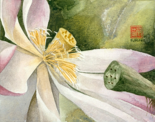 Lotus (Bloom) Kauai watercolor painting - Artist Emily Miller's Hawaii artwork of flower, lotus art