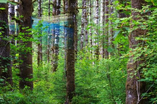 Beams, public art - String art, installation art, outdoor art, Tillamook forest artwork by Emily Miller