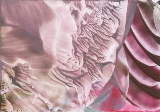 dusky rose, Encaustic -  artwork by Emily Miller