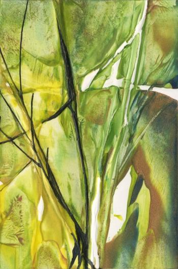 Spring Forest, garden -  artwork by Emily Miller