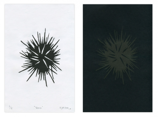 vana - spines B+W, 2014