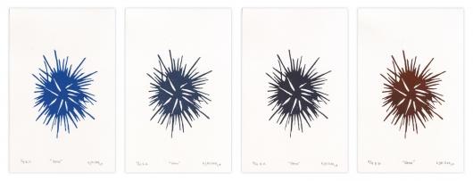 vana - spines (color), 2014