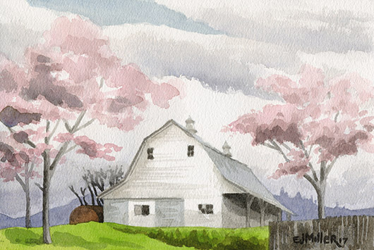 Cherry Blossom Barn, Countryside -  artwork by Emily Miller