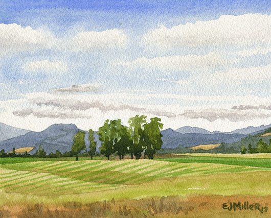 Oregon Summer Fields, Countryside -  artwork by Emily Miller