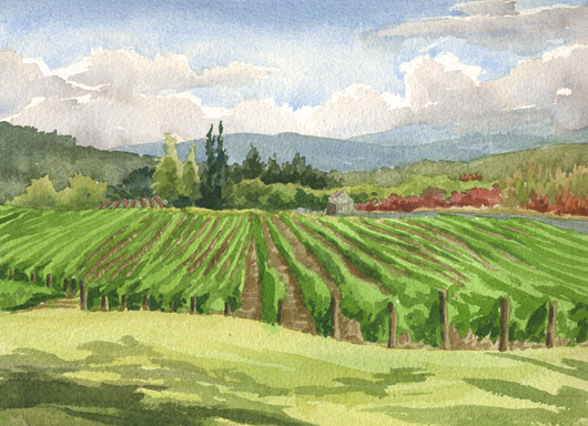 Montinore Vineyard, Oregon - winery, vineyard, wine country artwork by Emily Miller