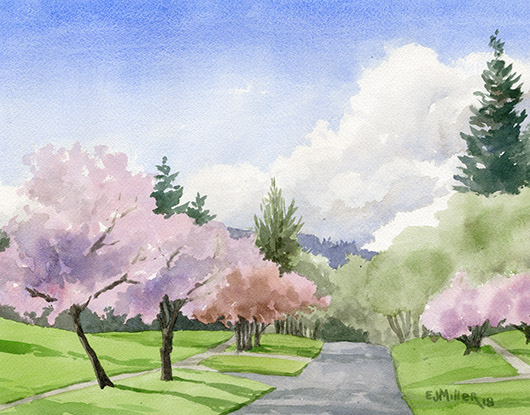 Cherry Blossom Road, Oregon - cherry blossoms artwork by Emily Miller