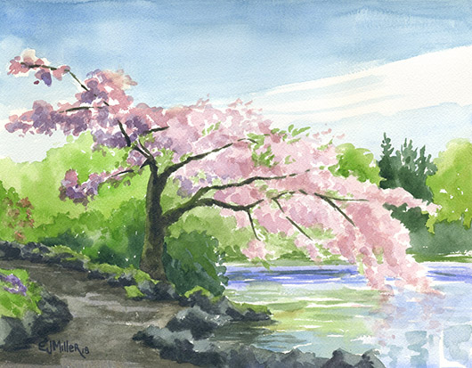 Cherry Tree over Crystal Springs Lake, Portland - cherry blossoms, portland artwork by Emily Miller