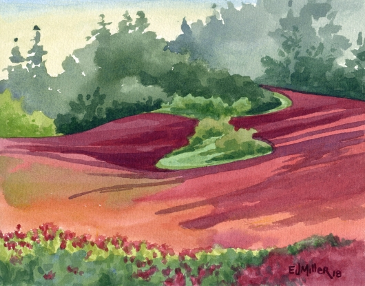 Red Clover Hillside, Oregon, Countryside -  artwork by Emily Miller