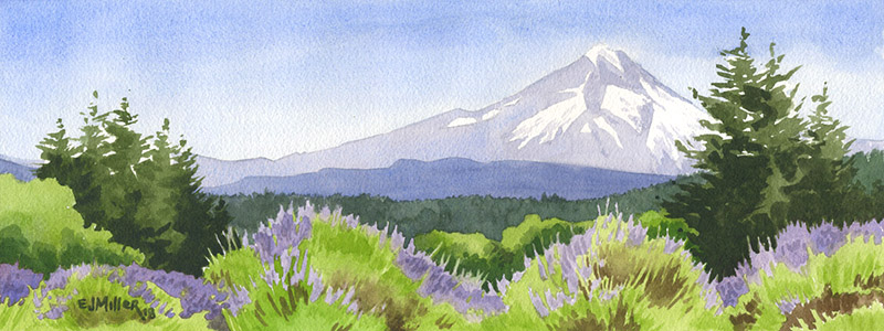 Mt. Hood from the Lavender Fields, Oregon lavender artwork by Emily Miller