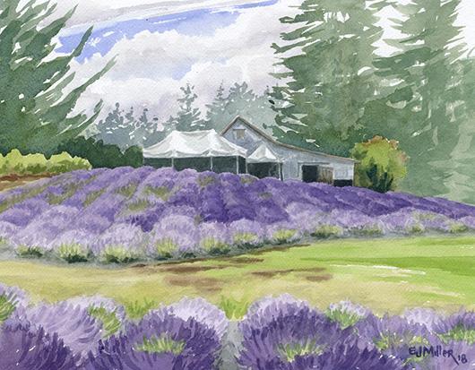 Mist at Wayward Winds Lavender