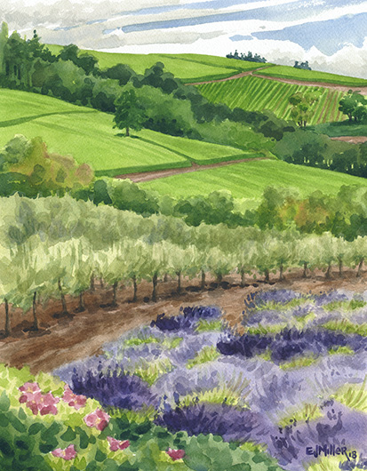Lavender and Olive Groves, Oregon lavender painting by Emily Miller