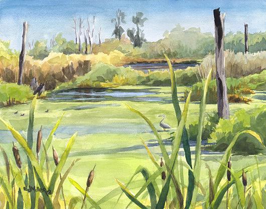 Full Sun at Fernhill Wetlands, $350.00