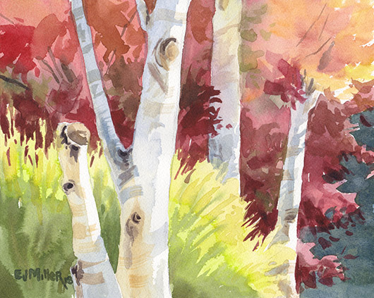 Autumn Sun on Maple and Birch Trees, Countryside - autumn artwork by Emily Miller