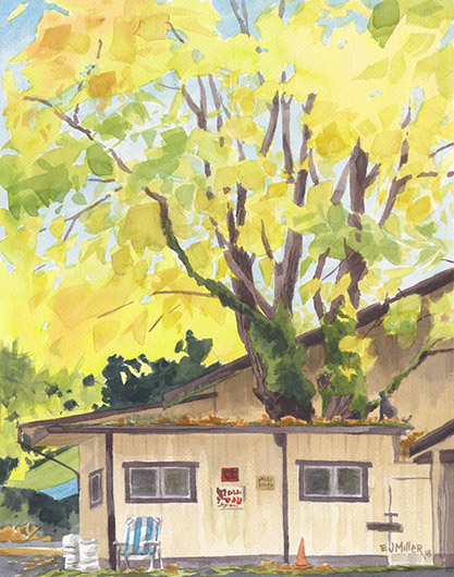 Radke Maple House, Portland Oregon watercolor artwork, tree painting by Emily Miller