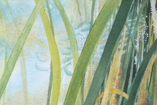 Detail, top right: Pacific herring spawning Eelgrass Meadow, Oregon Coast -  artwork by Emily Miller