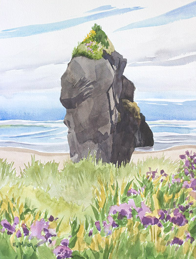 Wildflowers at Pistol River, Oregon Coast -  artwork by Emily Miller