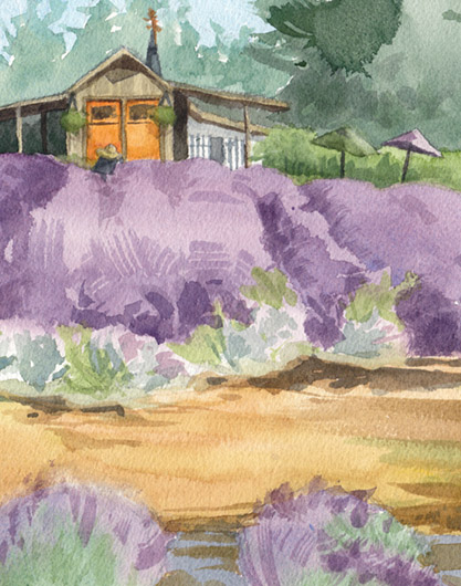 Detail view Lavender Breeze, Countryside -  artwork by Emily Miller